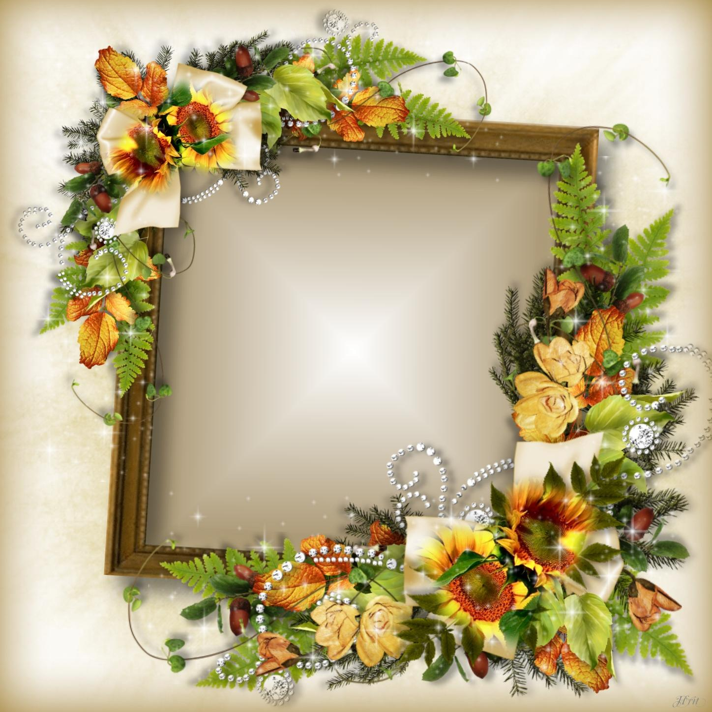 Imikimi Zo - Fall Frames - Have a beautiful autumn weekend #Hrit ...